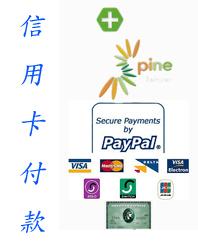 線上信用卡付費